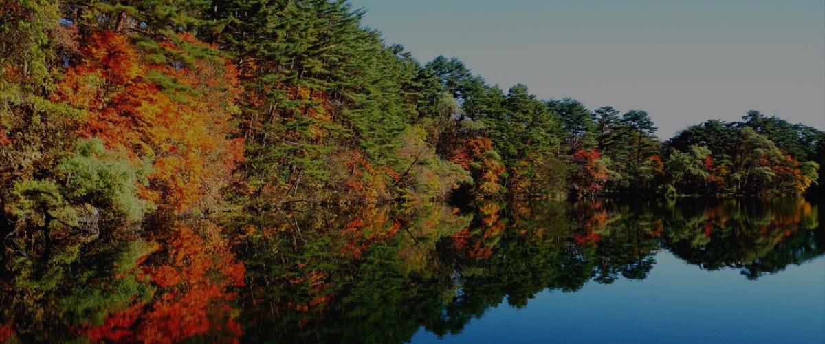 福島県 裏磐梯 紅葉の五色沼